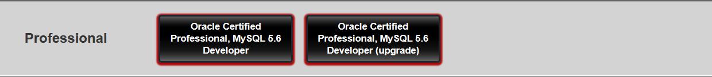 MySQL Developer